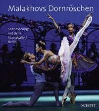 Theobald, Christiane u.a. (Hg.): Malakhovs Dornröschen