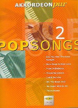 AKKORDEON PUR: Popsongs 2